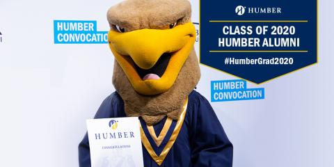 Humber Hawk in convocation gown
